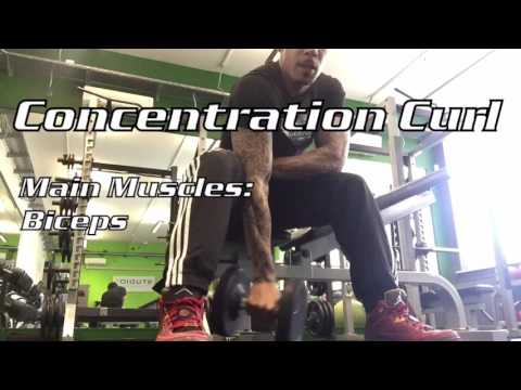 Single Arm Concentration Curl
