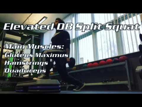 Elevated DB Split Squat