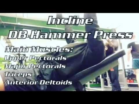 Incline DB Press with Hammer Grip