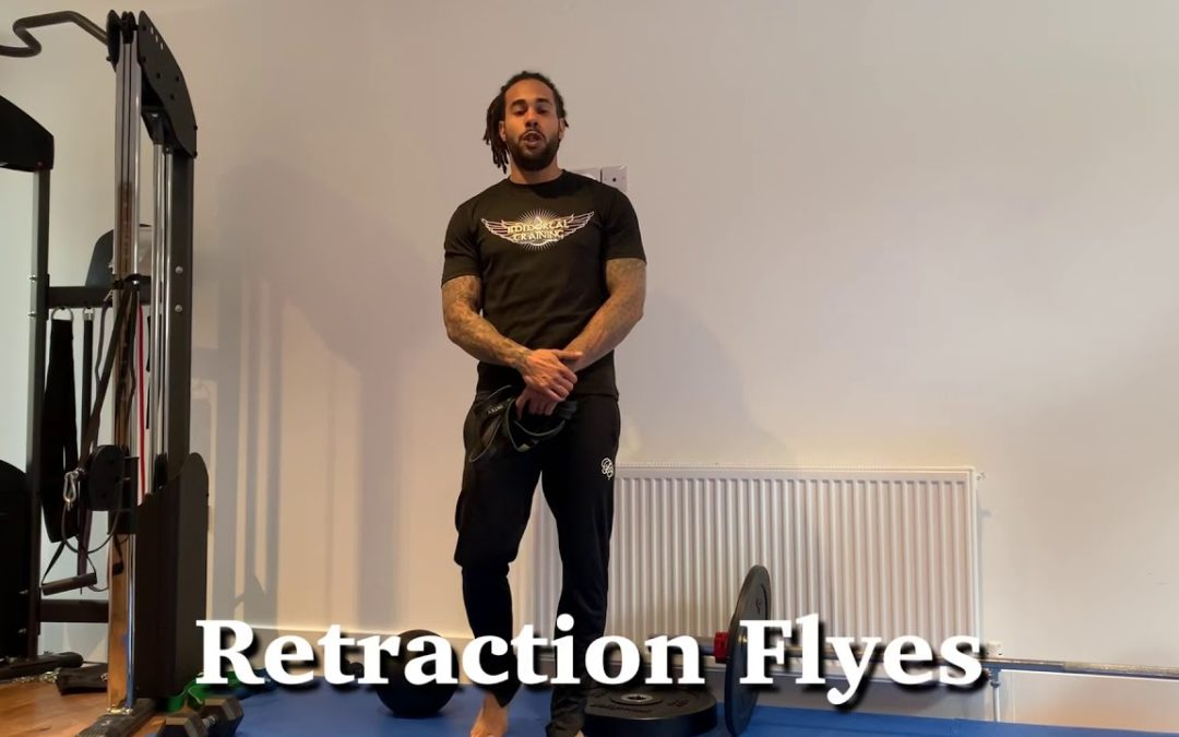 Retraction Flyes