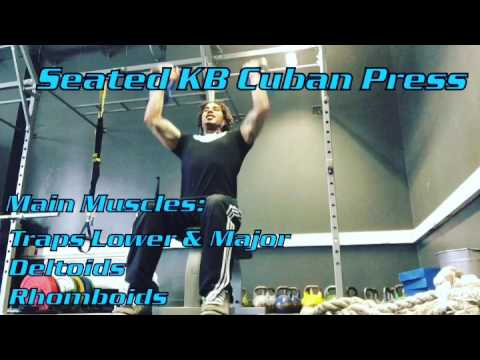 Seated KB Cuban Press