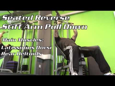 Seated Reverse Stiff Arm Pull Down