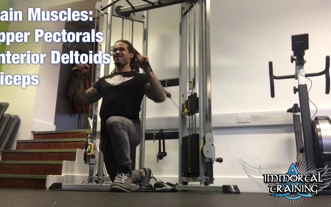 Single Knee Incline Cable Chest Press