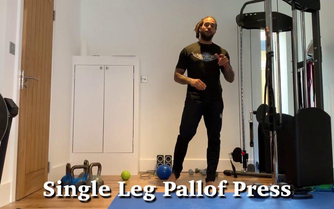 Single Leg Pallof Press