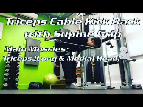 Triceps Cable Kick Back with Supine Grip
